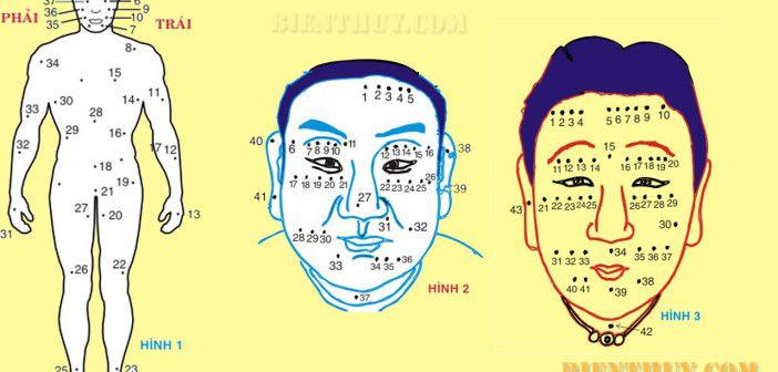 Lý giải vị trí nốt ruồi trên cơ thể con người