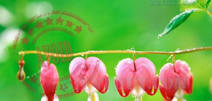 33 điều phải kiêng kỵ đặc biệt về tâm linh