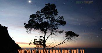 15 hiện tượng - sự thật khoa học thú vị có lẽ bạn không biết!
