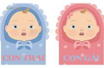 Cách tính ngày rụng trứng để sinh con trai